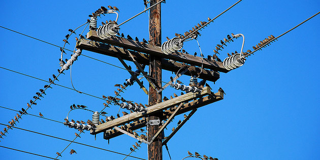 Base load, spikes and surges: measuring online activity like a power distribution system